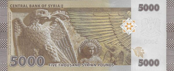 Syria 5000 pounds 2019